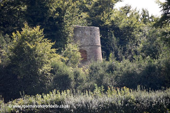 Top of John 'Mad Jack' Fuller's tower amongst the trees - Brightling East Sussex