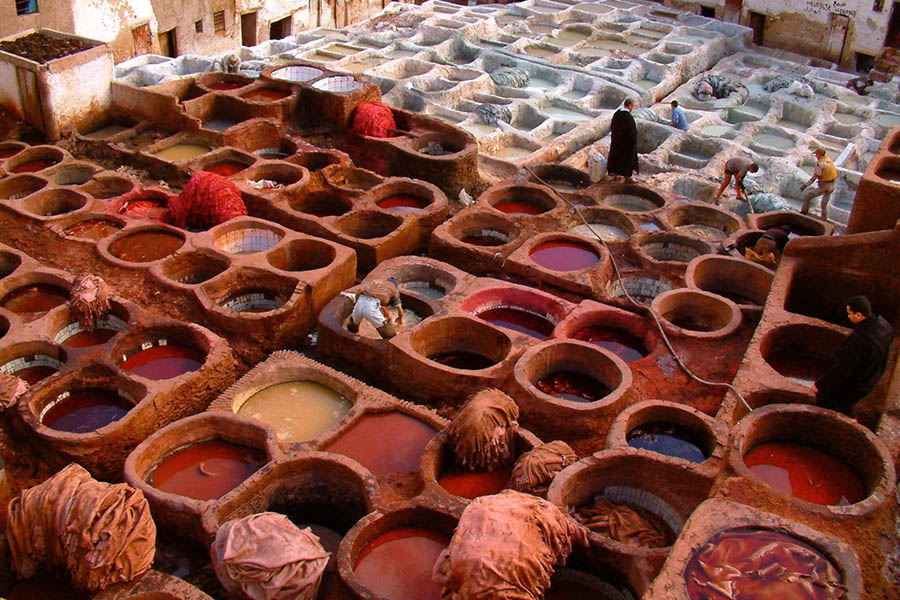 Tannery - Fez Morocco