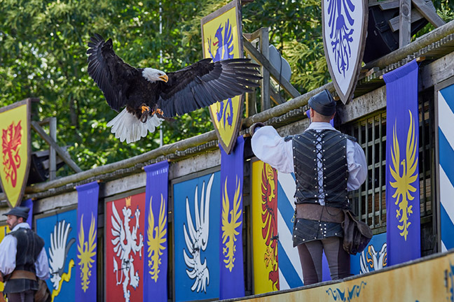 Dance of the birds Puy du Fou